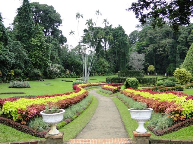 Królewski Ogród Botaniczny Kandy Peardeniya (2011)