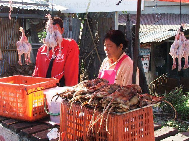 Szczury wodne pochodzące z pól ryżowych na przekąskę (2009)
