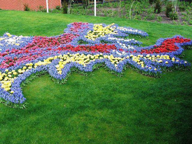 Głowa chińskiego smoka z kwiatów (Holandia, 2008)