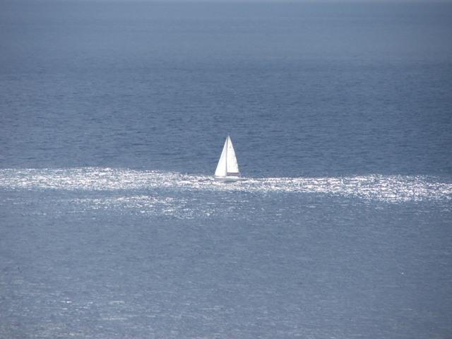 Żaglówka na Morzu Śródziemnym (Sycylia, 2008)
