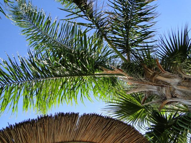 Blue Lagoon Resort - pełen relaks (21-28.09.2013)