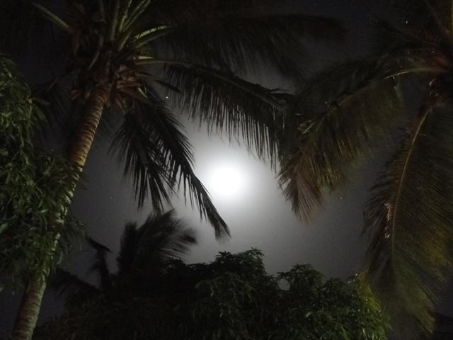 Księżycowa poświata, Ocean Bay, Gambia (11-17.01.2014)