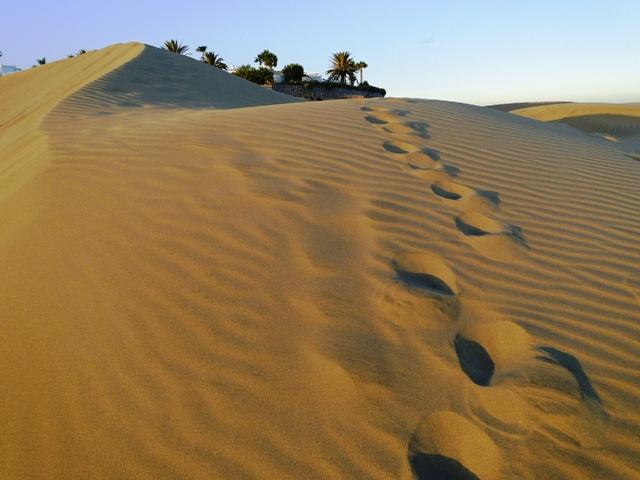 Wydmy Maspalomas/ The dunes of Maspalomas (23-30.09.2014)